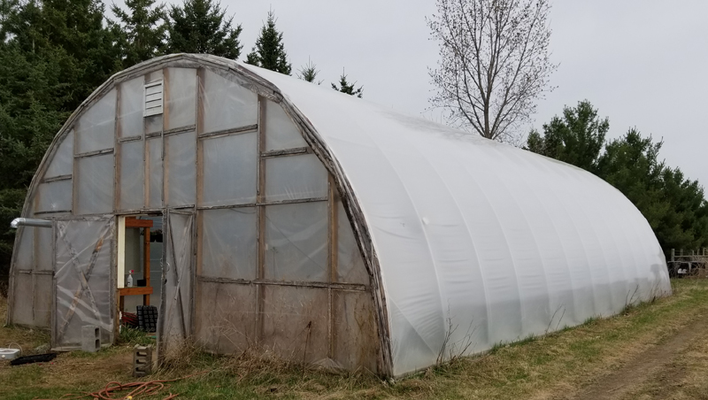 Greenhouse 4 Outside